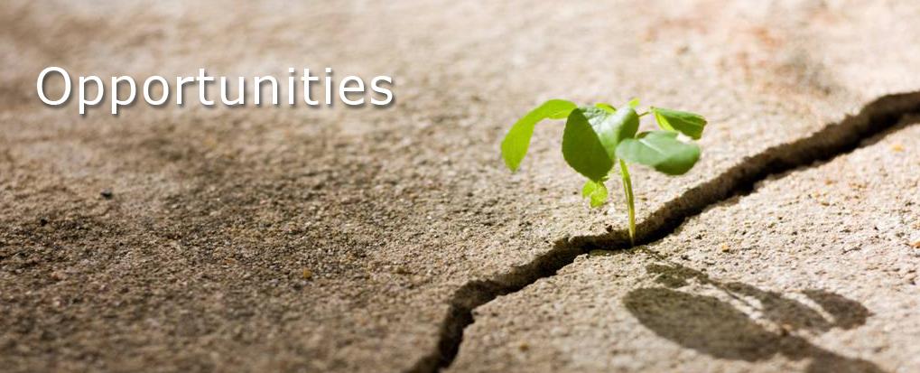opportunities-banner