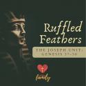 Ruffled Feathers   Genesis 37:1-4 Devotion