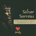 Silver Sorrows | Genesis 42:27-38 Devotion