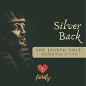 Silver Back | Genesis 44 Devotion