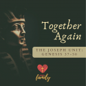 Together Again | Genesis 45:1-11 Devotion